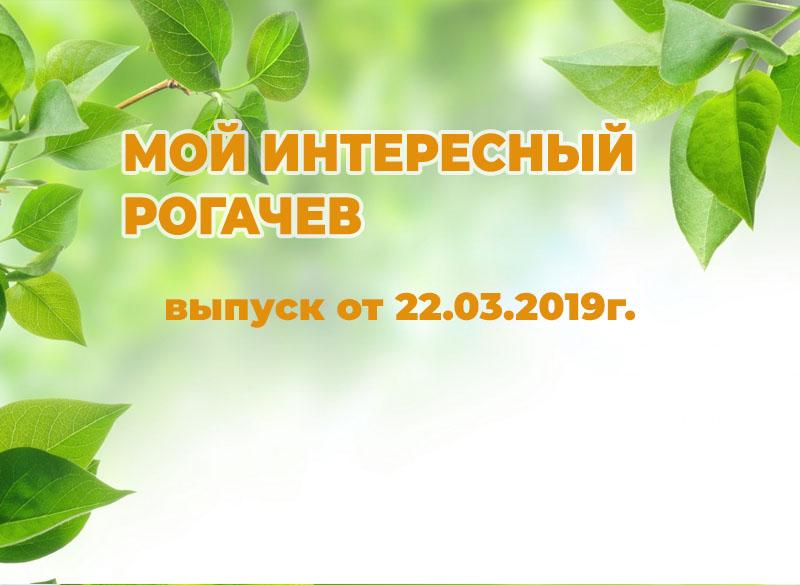 Мой интересный Рогачёв выпуск новостей 22.03.2019